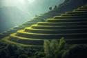 Agro tourism on Indonesia village